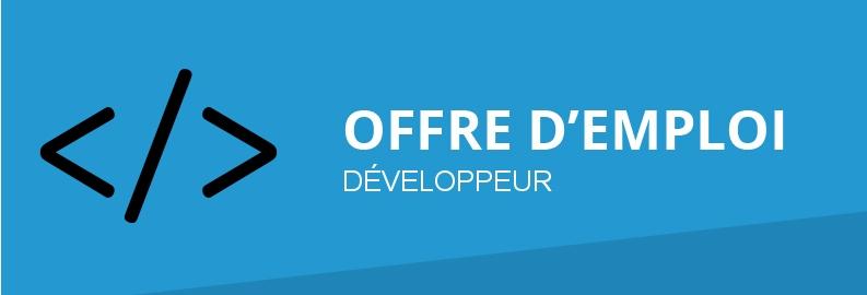 Offre d'emploi : Développeur E-commerce