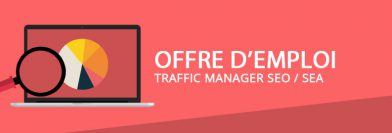 Traffic Manager SEO / SEA