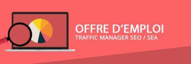 Traffic Manager SEO / SEA